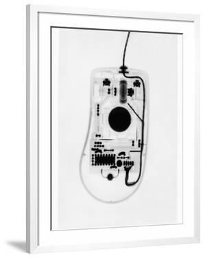 X-Ray of a Computer Mouse by Chris Rogers