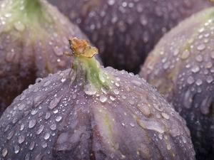 Fresh Figs with Drops of Water by Chris Schäfer