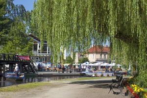 Europe, Germany, Brandenburg, Spreewald (Spree Forest), L?bbenau, Harbour Promenade, Weeping Willow by Chris Seba