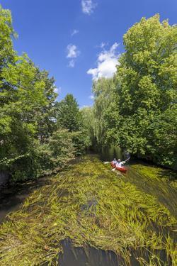 Europe, Germany, Brandenburg, Spreewald (Spree Forest), Schlepzig, Canoe Driver by Chris Seba