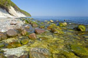 Europe, Germany, Mecklenburg-Western Pomerania, Baltic Sea Island R?gen, Chalk Cliffs by Chris Seba