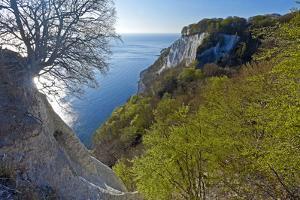 Europe, Germany, Mecklenburg-Western Pomerania, Island RŸgen, Chalk Cliff by Chris Seba