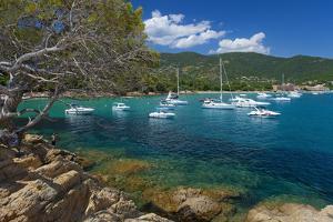 France, Cote D'Azur, Bathing Bay by Chris Seba