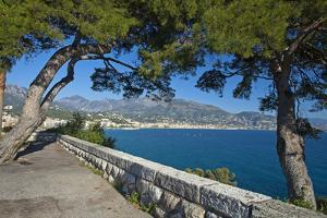 France, Cote D'Azur, Monaco, Bay by Chris Seba