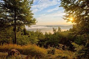 Germany, Hessen, Northern Hessen, National Park Kellerwald-Edersee, Morning Fog by Chris Seba