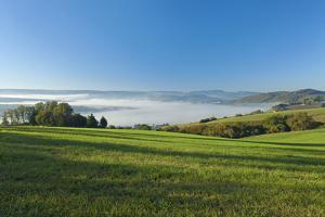 Germany, Lower Saxony, Weser Hills, Ottenstein Plateau, Autumn, Morning Fog, Weser Valley by Chris Seba