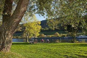 Germany, Rhineland-Palatinate, Moselle Shore, Cycle Track, Bicycle Tourists by Chris Seba