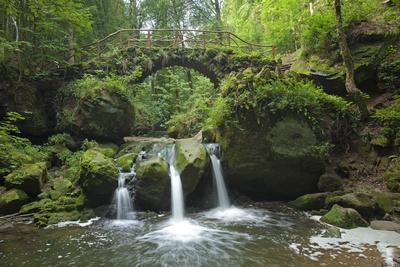 Luxembourg, MŸllertal, Wood, River, Bridge