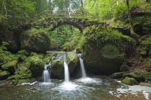 Luxembourg, MŸllertal, Wood, River, Bridge by Chris Seba