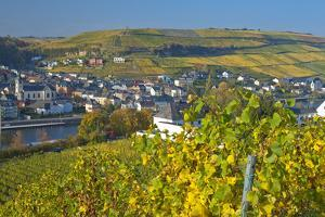 Luxembourg, Remich, Townscape, Vineyards, Autumn Colours by Chris Seba