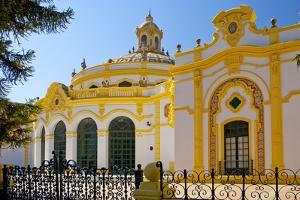 Spain, Andalusia, Seville, Theatre, Teatro Lope De Vego by Chris Seba