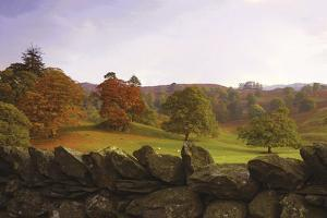 Dry Stone Wall by Chris Simpson