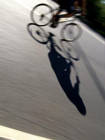 Cyclist and His Shadow by Chris Trotman