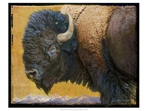 Bison Portrait III by Chris Vest