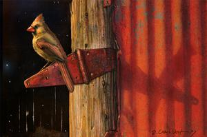 Cardinal by Chris Vest