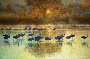 Cranes in Mist II by Chris Vest