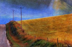 Cynthia's Road by Chris Vest