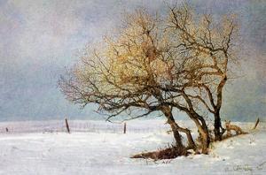 Fox and Winter Oak by Chris Vest