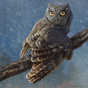 Owl in Winter I by Chris Vest