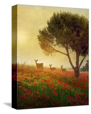 Trees, Poppies and Deer II by Chris Vest