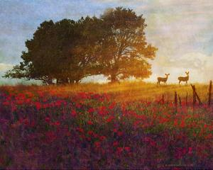 Trees, Poppies and Deer III by Chris Vest