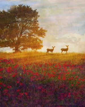 Trees, Poppies and Deer IV by Chris Vest