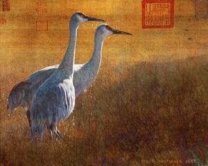 Walking Cranes by Chris Vest