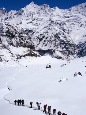 Trekkers in Line Near Annapurna Base Camp, Machhapuchhare, Gandaki, Nepal by Christer Fredriksson