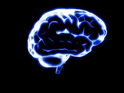 Human Brain by Christian Darkin