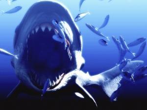 Megalodon Prehistoric Shark by Christian Darkin