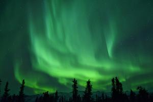 Aurora Borealis at Chena Hot Springs, Fairbanks, Alaska, Usa by Christian Heeb