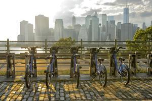 Brooklyn Promenade, Brooklyn, New York, Usa by Christian Heeb
