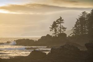 Canada, British Columbia, Vancouver Island, Port Renfrew, Juan Defuca Provincal Park by Christian Heeb