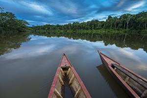South America, Peru, Amazonia, Manu National Park, UNESCO World Heritage by Christian Heeb
