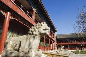 A Lion Statue at Zhen Jue Temple, Beijing, China, Asia by Christian Kober