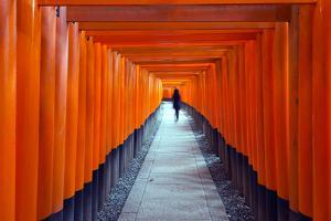 Asia, Japan, Honshu, Kyoto, Fushimi Inari Jinja; Unesco by Christian Kober
