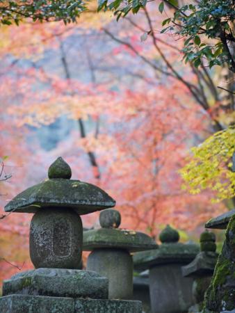 Asia, Japan; Kyoto, Sagano, Nison in (Nisonin) Temple by Christian Kober