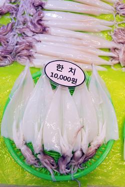 Asia, Republic of Korea, South Korea, Jeju Island, Dongmun Traditional Market, Squid by Christian Kober