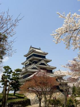 Cherry Blossoms, Matsumoto Castle, Matsumoto City, Nagano Prefecture, Honshu Island, Japan,Asia by Christian Kober