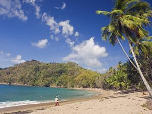Fisherman on a Palm-Fringed Beach, Englishmans Bay, Tobago, Trinidad and Tobago by Christian Kober