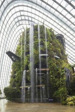 Gardens by the Bay, Cloud Forest, Botanic Garden, Singapore, Southeast Asia, Asia by Christian Kober