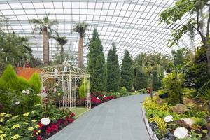 Gardens by the Bay, Flower Garden, Botanic Gardens, Singapore, Southeast Asia, Asia by Christian Kober