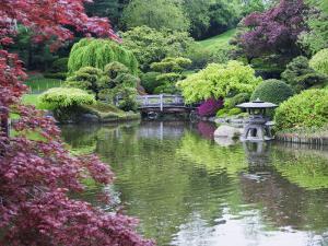 Japanese Garden, Brooklyn Botanical Garden, Brooklyn by Christian Kober