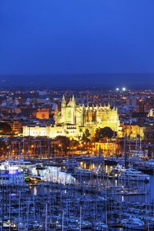 La Seu Cathedral, Palma de Mallorca, Majorca, Balearic Islands, Spain, Mediterranean by Christian Kober