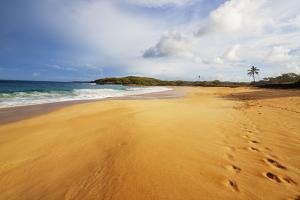 Papohaku Beach, Molokai Island, Hawaii, USA by Christian Kober