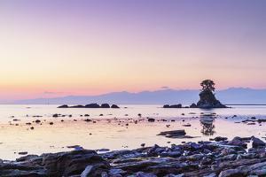 Pine tree on a rock outcrop in the Sea of Japan, Ameharakaigan, Toyama prefecture, Honshu, Japan by Christian Kober