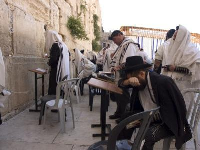 Praying at the Western (Wailing) Wall, Old Walled City, Jerusalem, Israel, Middle East by Christian Kober