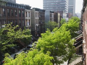 Residential Street, Harlem, New York City, New York, United States of America, North America by Christian Kober
