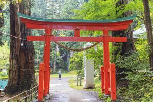 Torii gate, Takkoku no Iwaya Bishaman do temple, Hiraizumi, Iwate Prefecture, Honshu, Japan by Christian Kober