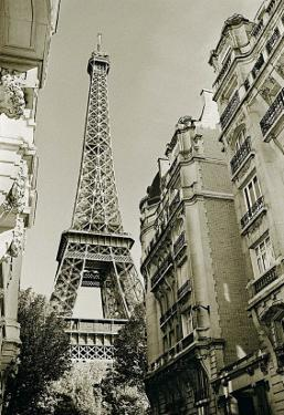 Eiffel Tower Street View, no. 1 by Christian Peacock